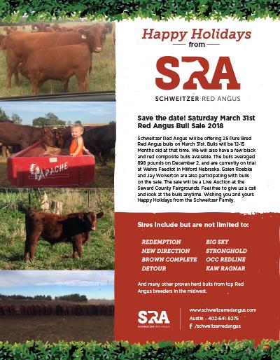 SRA Holiday Mailer